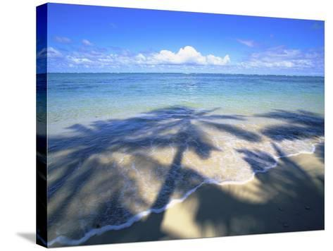 Beach with palm shadow-Douglas Peebles-Stretched Canvas Print