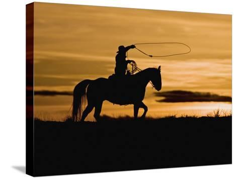 Cowboy on Horses on Hideout Ranch, Shell, Wyoming, USA-Joe Restuccia III-Stretched Canvas Print