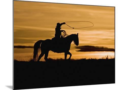Cowboy on Horses on Hideout Ranch, Shell, Wyoming, USA-Joe Restuccia III-Mounted Photographic Print
