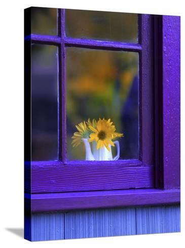 Window with Sunflowers in Vase-Steve Terrill-Stretched Canvas Print