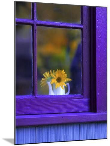 Window with Sunflowers in Vase-Steve Terrill-Mounted Photographic Print
