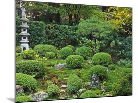 Sanzen-in Temple, Ohara, Kyoto, Japan-Rob Tilley-Mounted Photographic Print