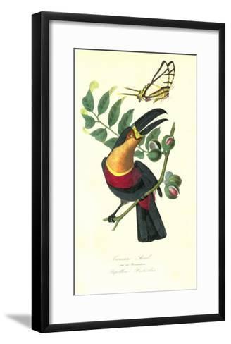 Toucan on Nutmeg-Porter Design-Framed Art Print