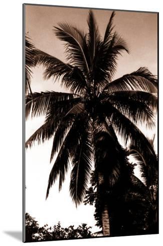 Sepia Palm 4-Porter Design-Mounted Premium Giclee Print