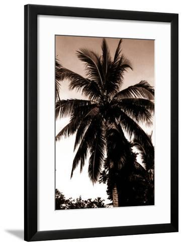 Sepia Palm 4-Porter Design-Framed Art Print