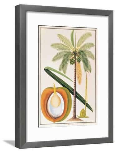 Kelapa or Coconut Palm-Porter Design-Framed Art Print