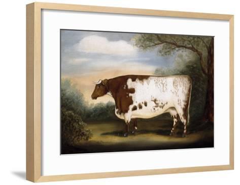 Durham Cow-Porter Design-Framed Art Print