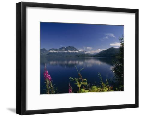 Wildflower in Bloom Along Mountainous Coast of Vancouver Island-Paul Sutherland-Framed Art Print