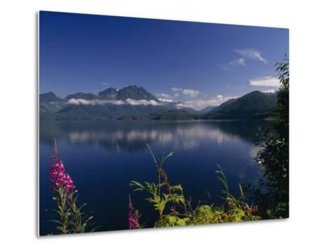Wildflower in Bloom Along Mountainous Coast of Vancouver Island-Paul Sutherland-Metal Print