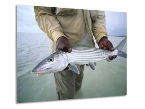 Fisherman Holds Out a Bonefish Off Great Exuma Island-Michael Melford-Metal Print