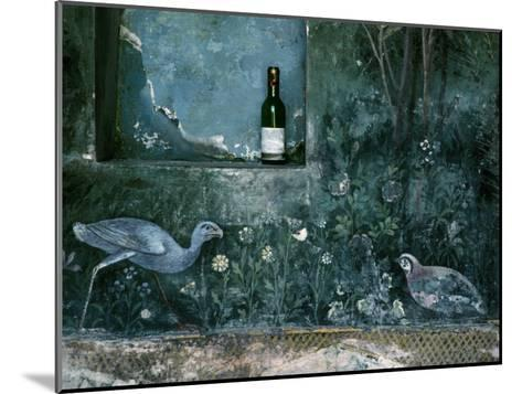 Modern Wine Bottle Sits Atop Shelf in Ancient Pompeii, Italy-O^ Louis Mazzatenta-Mounted Photographic Print