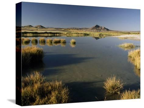Saline Ponds Near Tecopa, in the Mojave Desert-Gordon Wiltsie-Stretched Canvas Print