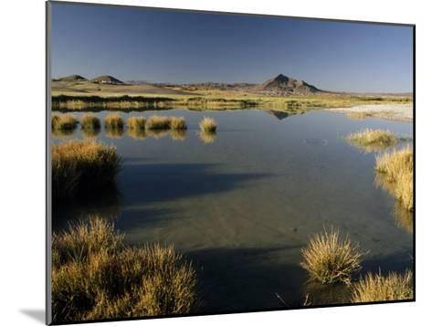Saline Ponds Near Tecopa, in the Mojave Desert-Gordon Wiltsie-Mounted Photographic Print