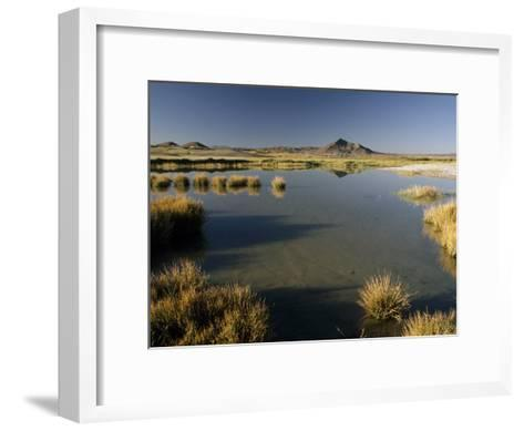 Saline Ponds Near Tecopa, in the Mojave Desert-Gordon Wiltsie-Framed Art Print