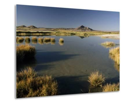 Saline Ponds Near Tecopa, in the Mojave Desert-Gordon Wiltsie-Metal Print