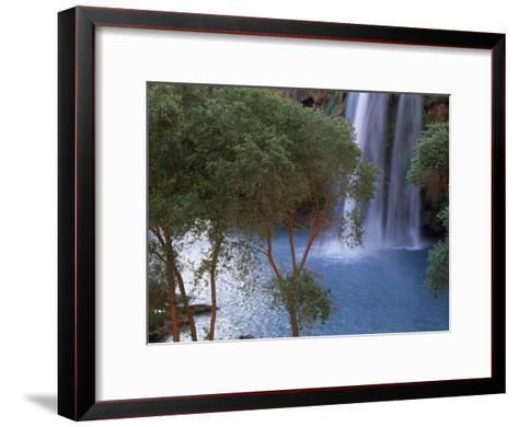 Havasu Falls Behind a Grove of Trees-Bill Hatcher-Framed Art Print