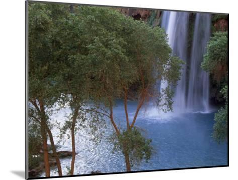 Havasu Falls Behind a Grove of Trees-Bill Hatcher-Mounted Photographic Print