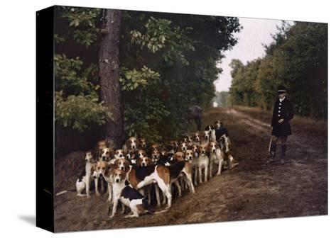 Boy and a Mass of Hounds Wait in the Woods for a Hunt to Begin-Gervais Courtellemont-Stretched Canvas Print