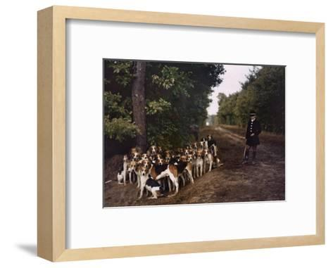 Boy and a Mass of Hounds Wait in the Woods for a Hunt to Begin-Gervais Courtellemont-Framed Art Print