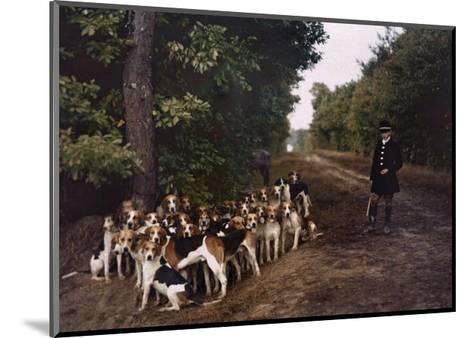 Boy and a Mass of Hounds Wait in the Woods for a Hunt to Begin-Gervais Courtellemont-Mounted Photographic Print