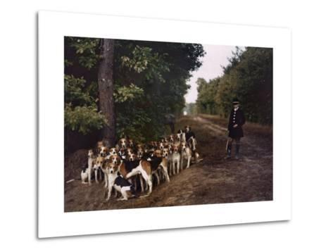 Boy and a Mass of Hounds Wait in the Woods for a Hunt to Begin-Gervais Courtellemont-Metal Print