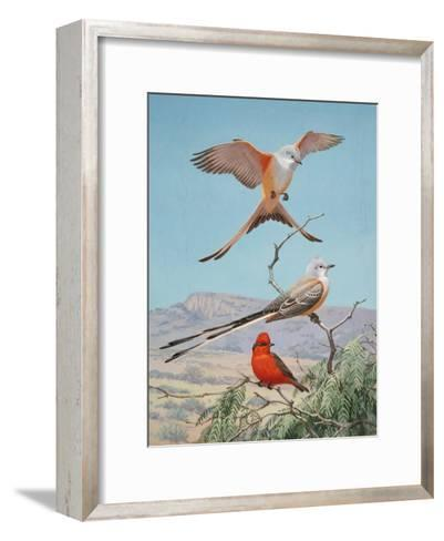 Scissor-Tailed and Vermilion Flycatchers Perch on a Mesquite Tree-Walter Weber-Framed Art Print