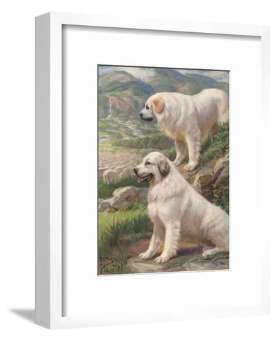Two Great Pyrenees Dogs Guard a Flock of Sheep--Framed Art Print
