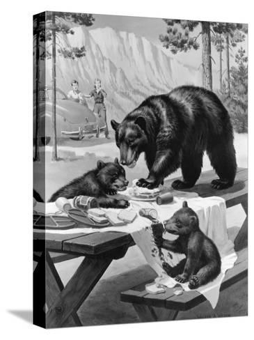 Black Bear Mother and Her Cubs Raid a Picnic, People Hide Behind Car-Walter Weber-Stretched Canvas Print