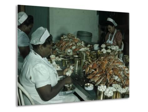 Women Pick and Pack Crab Meat into Cans-Robert Sisson-Metal Print