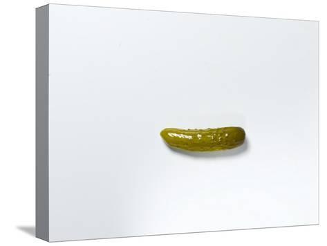 Studio Shot of a Pickle-Rebecca Hale-Stretched Canvas Print