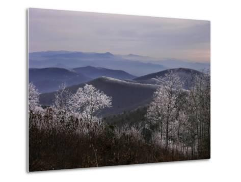 Trees Along High Elevation Mountain Ridges Frosted with Rime Ice-White & Petteway-Metal Print