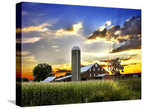 Silo, Barn, and Cornfield of an American Farm Backlit at Sunset-White & Petteway-Stretched Canvas Print