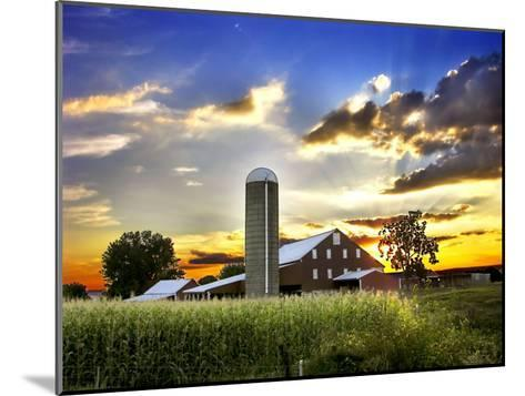 Silo, Barn, and Cornfield of an American Farm Backlit at Sunset-White & Petteway-Mounted Photographic Print
