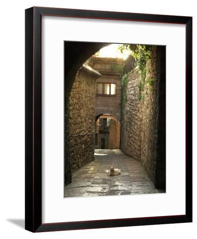 Cat Resting in the Middle of a Cobblestone Street in Gubbio, Italy-xPacifica-Framed Art Print