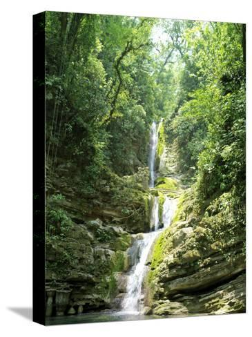 Jungles Where Edward James Built His Las Pozas-xPacifica-Stretched Canvas Print