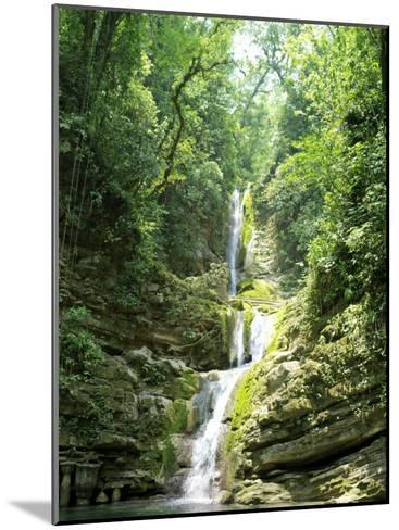 Jungles Where Edward James Built His Las Pozas-xPacifica-Mounted Photographic Print