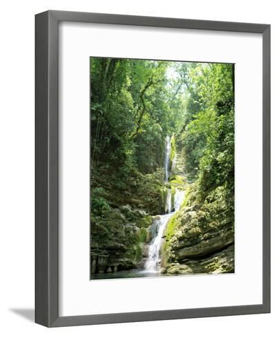 Jungles Where Edward James Built His Las Pozas-xPacifica-Framed Art Print