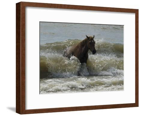Horse Rides the Waves in the Atlantic Ocean-Stacy Gold-Framed Art Print