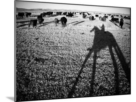 Round Up on the Reservoir Ranch in Big Piney, Wyoming-Drew Rush-Mounted Photographic Print