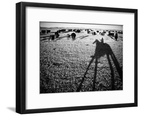 Round Up on the Reservoir Ranch in Big Piney, Wyoming-Drew Rush-Framed Art Print