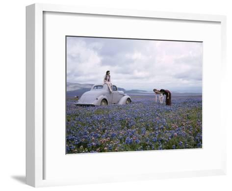 Travelers Find Wildflowers Abundant Along San Joaquin's Route 99-B^ Anthony Stewart-Framed Art Print
