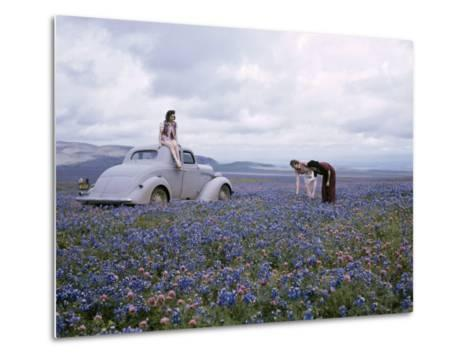 Travelers Find Wildflowers Abundant Along San Joaquin's Route 99-B^ Anthony Stewart-Metal Print