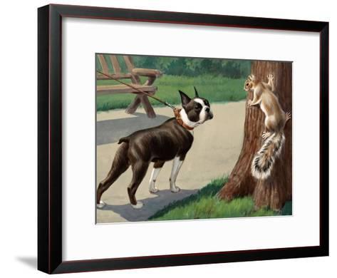 Boston Terrier Eyes a Nervous Squirrel-Walter Weber-Framed Art Print