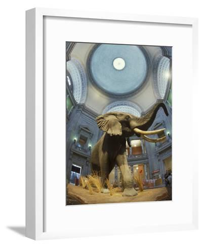 Rotunda of the National Museum of Natural History-Richard Nowitz-Framed Art Print