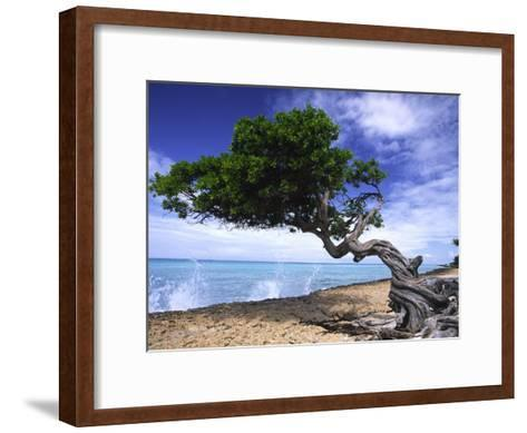 Waves Splash onto a Beach with a Gnarly Tree-Michael Melford-Framed Art Print