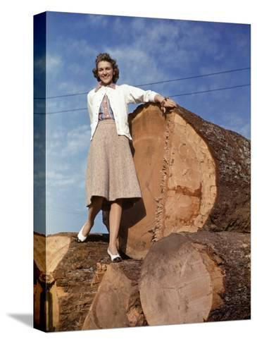 Woman Stands on a Pile of Gigantic Douglas Fir Logs-Maynard Owen Williams-Stretched Canvas Print