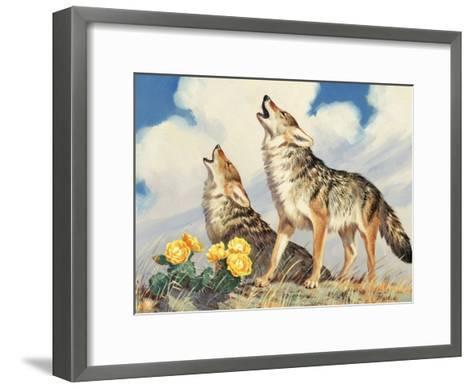 Coyotes Howl to the Setting Sun-Walter Weber-Framed Art Print