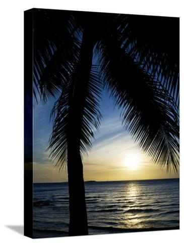 Silhouetted Palm Tree and Gentle Surf at Twilight-Mattias Klum-Stretched Canvas Print