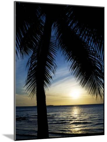 Silhouetted Palm Tree and Gentle Surf at Twilight-Mattias Klum-Mounted Photographic Print