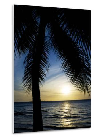 Silhouetted Palm Tree and Gentle Surf at Twilight-Mattias Klum-Metal Print